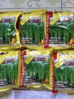 เมล็ดผักบุ้งใบไผ่ ผักบุ้งเรียวไผ่ (1 กก.)