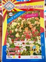 ดอกรักเร่ คละสี dahlia mix 30เมล็ด