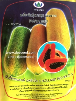 มะละกอ ฮอลแลนด์(20เมล็ด)