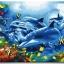 รหัส HB4050321 ภาพระบายสีตามตัวเลข Paint by Number แบบ Dolphin ขนาด40x50cm/พร้อมส่ง thumbnail 1