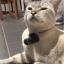 POD Tracker 3 GPS Tracker ค้นหาสัตว์เลี้ยงสำหรับแมวและหมา thumbnail 14