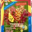 ดอกลิ้นมังกรคละสี tetra mix 0.3กรัม thumbnail 1