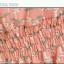 ++สินค้าพร้อมส่งค่ะ++ชุดเดรส คอเหลี่ยม แขนเต่อ ผ้าพิมพ์ลายน้องเหมียว แต่งไหล่ด้วยลูกไม้ จั้มช่วงเอว ดีไซด์น่ารัก - สีชมพู thumbnail 7