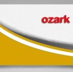 ozark trail แก้วเก็บเย็น