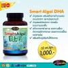 อาหารเสริม บำรุงสมอง Auswelllife Smart Algal DHA 110.25 mg. 60 แคปซูล 1 กระปุก ราคาส่ง XXX สั่งซื้อ LINE : @narisze ปลีก-ส่ง รับสมัครตัวแทน โทร 089-410-53-79