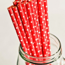 Paper Straws in Red & White Polka Dots