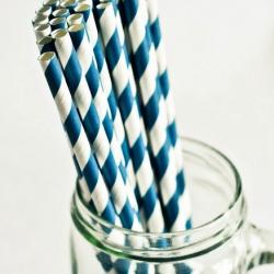 Paper Straws in Navi Blue & White Stripes