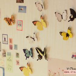 ชุดสติ๊กเกอร์ - butterfly decorative stickers