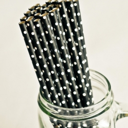 Paper Straws in Black & White Polka Dots