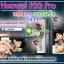 เคส Huawei P20 Pro วันพีช มันวาว สีสดใส กันกระแทก คุณภาพดี thumbnail 1