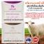 ครีมรกแกะPlacenta Essence Cream Grape Seed Extract thumbnail 5