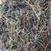 เจียวกู่หลานพันธุ์พื้นเมือง (เจียวกู่หลานป่า) น้ำหนัก 500 กรัม