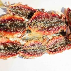 ปลาทูโรยงา
