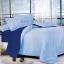 ขายส่ง ชุดเซท ผ้าปูที่นอน สีพื้น เกรดA ส่ง 120 บาท thumbnail 8