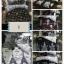 ขายส่ง ชุดเซท ผ้าปูที่นอน+ผ้านวม 6ฟุต*6 ชิ้น เกรดA ส่งเริ่มต้น 380 บาท thumbnail 2