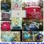 ขายส่ง ชุดเซท ผ้าปูที่นอน+ผ้านวม 6ฟุต*6 ชิ้น เกรดA ส่งเริ่มต้น 380 บาท thumbnail 20