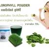 เฉพาะหมวด Promotion (นักช้อป-แม่ค้า) > Chlorophyll Powder คลอโรฟิลล์ พาวเดอร์