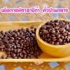 เมล็ดกาแฟอาราบิก้า (Arabica) 100% ชนิดคั่วกลาง เมล็ดกาแฟออร์แกนิค ปลูกแบบธรรมชาติ ปลอดสารเคมี กาแฟจากยอดดอย ม่อนดอยลาง อ.แม่อาย จ.เชียงใหม่