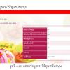 ระบบงานศูนย์พัฒนาเด็กไทย