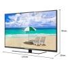 LED TV VIERA TH-55C300T Panasonic LED Digital TV 55 นิ้ว รุ่น TH-55C300T ถูกกว่าห้าง ลดถูกสุด โทร 097-2108092, 02-8825619