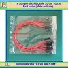 1x Jumper (M2M) cable 20 cm 10pcs Red color (Male to Male)