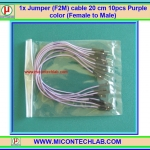 1x Jumper (F2M) cable 20 cm 10pcs Purple color (Female to Male)