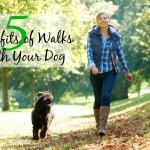 5 ประโยชน์ของการเดินเล่นกับสุนัขของคุณ