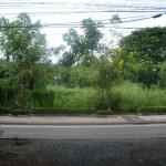 H410 ที่ดิน 2ไร่ อย่ติดถนนบรมราชชนนี เยื้อง สน.ตลิ่งชัน ใกล้ร้านอาหารตลิ่งชัน และโชว์รูมฮอนด้า ติดถนนเรียบทางรถไฟ