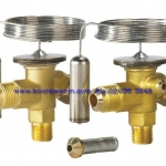 Thermostatic element TEX R22