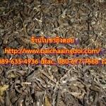 ชาเขียวอัสสัม 1 กิโลกรัม ชาอัสสัมพันธ์พื้นเมือง ชาป่า ใบชาคุณภาพ ไม่ฉีดยา สารเคมีใดๆ จากสวนชาบนดอยสูง บรรจุถุงแก้วใสธรรมดา