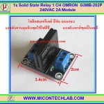1x Solid State Relay 1 CH OMRON G3MB-202P 240VAC 2A Module