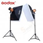 Godox 250W x 2set studio flash suit