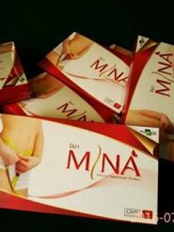 Set 1 เดือน มินา 1 กล่อง+โจรี่ 1 กล่อง (ประหยัด 80 บาท) ลดสัดส่วน 12-15 กก.
