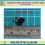1x Female Pin Header 1x4 Pin Single Row Pitch 2.54mm (1pcs per lot) thumbnail 1