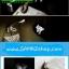 ราคาพิเศษ โคมไฟ LED แบบพกพา USB ขนาดเล็ก พกง่าย เบา ทน thumbnail 9