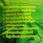 เจียวกู่หลานชนิดพร้อมชง Teabag เจียวกู่หลานสายพันธุ์จีน เกรดธรรมดา ขนาดบรรจุ 30 ซอง ราคาซองละ 89 บาท thumbnail 3