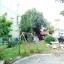 H816 ขายทาวน์โฮม 3ชั้น 34.7 ตร.วา หมู่บ้านเอสพี โฮม ซอยคู้บอน27 รามอินทรา กม.8 หลังมุม 3นอน 3น้ำ 1ครัว เหมาะทำออฟฟิศและพักอาศัย thumbnail 11