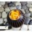 เชิงเทียนไม้มะม่วงทรงกลม DecorLike รุ่น WC-006 thumbnail 4