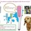 แปรงอาบน้ำเจ้าตูบ [Handheld Pet Shower ] 1 อัน thumbnail 1