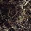 เจียวกู่หลานสายพันธุ์ไทยชนิดใบ (มีจำนวนจำกัด) เจียวกู่หลานป่า จากยอดดอยอ่างขาง เชียงใหม่ บรรจุ 50 กรัม thumbnail 5