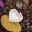 ถ้วยใส่น้ำจิ้มเซรามิครูปทรงหัวใจ thumbnail 5