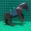 Brown Horse thumbnail 1