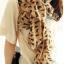 ผ้าพันคอชีฟอง ลายแมวสีน้ำตาล thumbnail 1