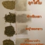 ชาลูกใต้ใบ บรรจุ 15 ซองเล็ก ลูกใต้ใบ สมุนไพรชั้นเลิศ เหมาะสำหรับผู้ที่ต้องการดูแลรักษาตับ thumbnail 2