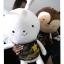 ตุ๊กตาหมอคัง กระต่ายจาก descendants of the sun thumbnail 1