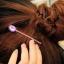 คลิกเข้ามาเพื่อเลือกสี กิ๊บติดผม Gem Hairpin HR1037 thumbnail 4