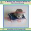 1x MQ-4 Methane Gas Sensor, Compress Natural Gas CNG MQ4 Sensor Module thumbnail 1