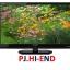 ทีวีราคาถูก สินค้าใหม่ Sharp LED 24 นิ้ว รุ่น LC-24LE150M สนใจโทร 0972108092, 02-8825619 thumbnail 1