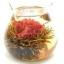ชาดอกไม้บาน 6 ก้อน 200 บาท ค่าจัดส่งฟรีค่ะ thumbnail 1