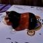 ขวดตุ๊กตาใส่เครื่องเทศ รูปหนูแกสบี้ thumbnail 5